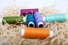 Hilo coloreado en la hierba del rafi fotografía de archivo