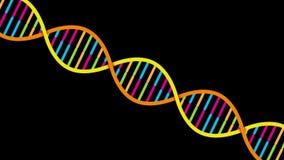 Hilo de la DNA metrajes