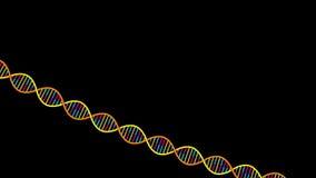 Hilo de la DNA almacen de metraje de vídeo