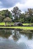 Hilo garden, Big Island, Hawaii Stock Photo