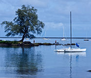 Hilo, Hawaii Royalty Free Stock Photos