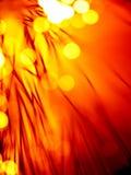 Hilos candentes de la óptica de fibras Imagen de archivo