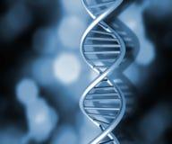 Hilos de la DNA foto de archivo
