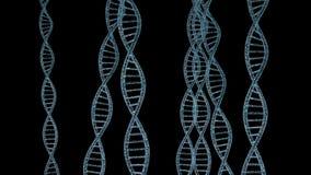 Hilos de la DNA ilustración del vector