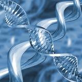 Hilos de la DNA Imagen de archivo