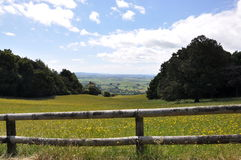 Hilside de Nova Zelândia Foto de Stock Royalty Free