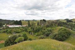 Hilside de Nueva Zelanda Imagenes de archivo