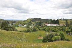 Hilside della Nuova Zelanda Fotografie Stock Libere da Diritti