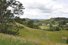 Hilside van Nieuw Zeeland Stock Afbeelding