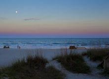 Hilton Head Island Beach. Beach at Hilton Head Island, South Carolina at dusk Royalty Free Stock Photography