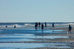 Hilton Head Island Beach Walkers. People walking through tide pools on Hilton Head Island Beach just before sunset Royalty Free Stock Image