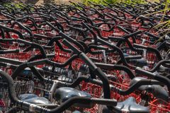 Hilton Head, South Carolina - April 12, 2018: Bicycles for rent. Hilton Head, South Carolina - April 12, 2018: Massive number of black bicycles with red baskets royalty free stock images