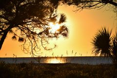 Hilton Head Sunrise Arkivbilder