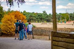 HILVARENBEEK,荷兰- 2018年8月1日:在一个温暖的夏日, 免版税库存图片