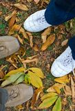 Him and her. Looking down at sport shoes, male and female feet on autumn leaves Royalty Free Stock Photos
