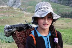 Himachal Girl with basket on back. Beautiful Himachali Girl in Gondla, HP Stock Image