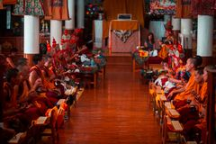 Himalai royalty free stock image
