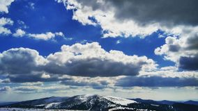 Himalais de Eslováquia imagem de stock royalty free