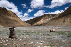 Himalaja-Landschaft u. Schmieröl-Trommeln Lizenzfreie Stockfotografie