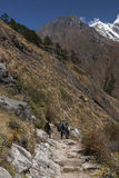 Himalaje Obraz Stock