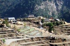 Himalaya Stock Photos