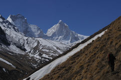 himalaya Foto de Stock Royalty Free