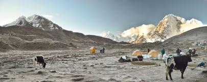 Himalaya campsite Stock Images