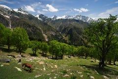 Himalaya landscape royalty free stock photography