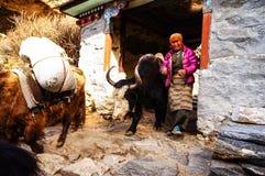Himalaya logistics. Royalty Free Stock Photos
