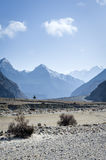 Himalaya mountains with lonley tree Stock Photos