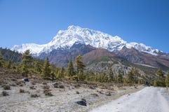 Himalaya mountains Stock Photography