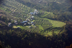 himalaya nepal som trekking Arkivbilder