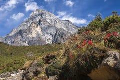 Himalaya. Nice View of the Himalayas Stock Photos