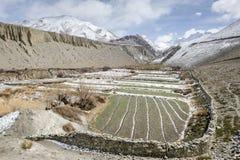 Himalaya Panorama Stock Photography