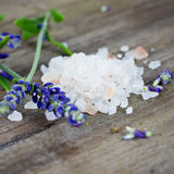 Himalaya salt Royalty Free Stock Photos