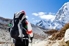 himalaya trekking kvinna Royaltyfri Foto
