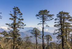 Himalaya view Royalty Free Stock Photography