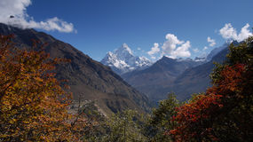Himalayan autumn Royalty Free Stock Images