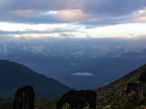 Himalayan Backdrop. royalty free stock photo
