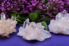 Himalayan Clear Quartz Clusters with Hematite inclusions surrounded by lilac flowers. Himalayan Clear Quartz Clusters with Hematite inclusions surrounded by stock photo