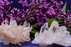 Himalayan Clear Quartz Clusters with Hematite inclusions surrounded by lilac flowers. Himalayan Clear Quartz Clusters with Hematite inclusions surrounded by royalty free stock photos
