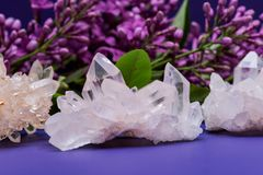 Himalayan Clear Quartz Clusters with Hematite inclusions surrounded by lilac flowers. Himalayan Clear Quartz Clusters with Hematite inclusions surrounded by stock photography