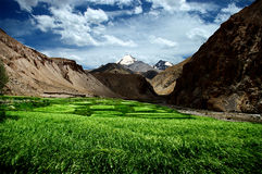 Himalayan fields Stock Image