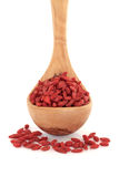Himalayan Goji Berry Fruit Stock Images