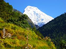 Himalayan landscape with beautiful mountain scene and sky. royalty free stock photo