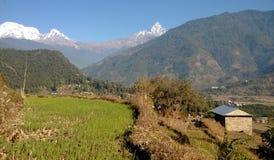Himalayan landskap Arkivfoto