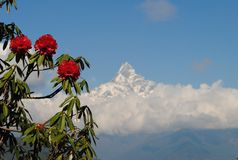 Himalayan mountains Royalty Free Stock Images