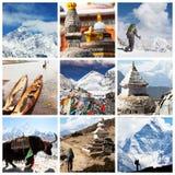Himalayan Stock Image