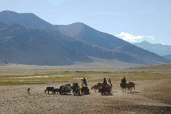 Himalayan nomads. Populations, along Leh-Manali road, Ladakh, India Stock Photos