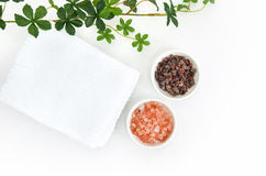 Himalayan rock salt. Stock Image